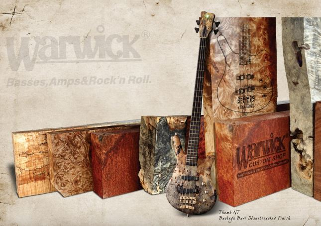 warwick basses amps and rock n roll